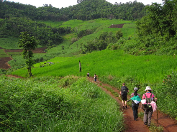 chiang mai trek only walk and rafting, chiang mai trek, chiang mai treks