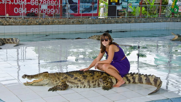 private tour mae rim, chiang mai tour, private tours chiang mai, crocodile show chiang mai