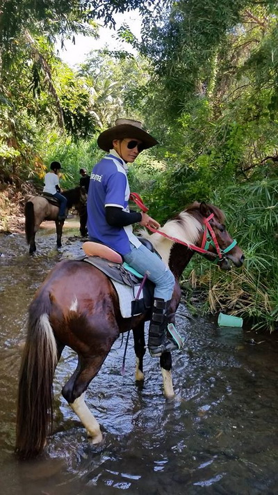 chiang mai horse riding, attractions in chiang mai, chiang mai attractions
