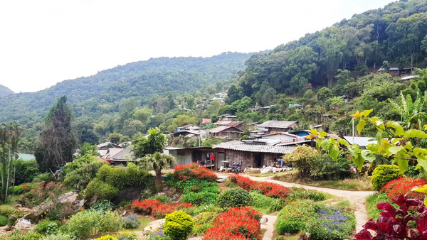 doi pui hmong village, hmong hilltribe