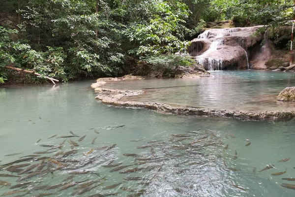 private tour chiang mai to bangkok, 4 days 3 nights private tour from chiang mai to bangkok, erawan waterfall, erawan waterfall kanchanaburi