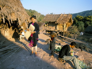hmong hilltribe, hmong hill tribe, hill tribes in thailand, hill tribes of northern thailand, chiang mai hill tribe