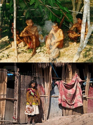mlabri hilltribe, mlabri hill tribe, hill tribes of northern thailand, hill tribes in Thailand, yellow leaf hilltribe, yellow leaf hill tribe