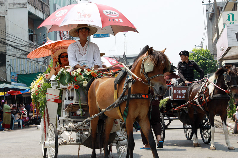 horse carriage in lampang, horse carriage, horse carting in lampang