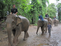 chiang mai mahout training, Ban Bang Kud Elephant Camp