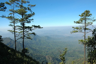 doi wiang pha national park, doi wiang pha, national parks in northern thailand