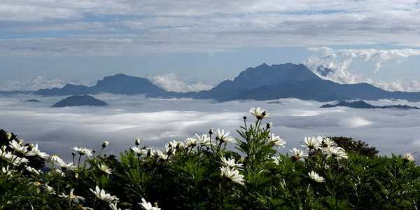 huai nam dang national park, huai nam dang, national parks in northern thailand
