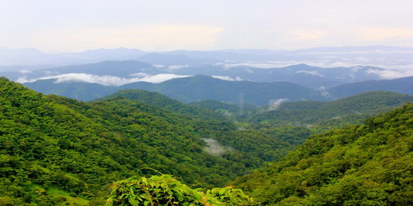 khun khan national park, khun khan, national parks in northern thailand