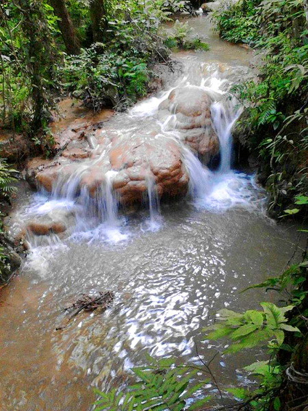 pha daeng national park, pha daeng, national parks in northern Thailand, national parks in chiang mai