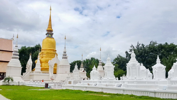 Suan Dok Temple : Improtant temple in Chiang Mai