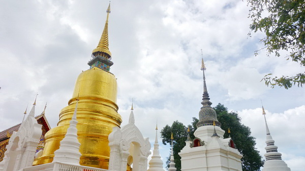 private tour chiang mai city and temple, private tour suan dok temple, private tour wat suan dok