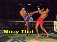 muay thai, thai kick boxing chiang mai, attractions in chiang mai