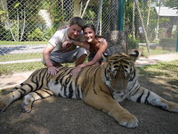 attractions in chiang mai, Chiang Mai Tiger Kingdom