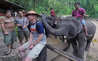 chiang mai day tours, maesa elephant camp