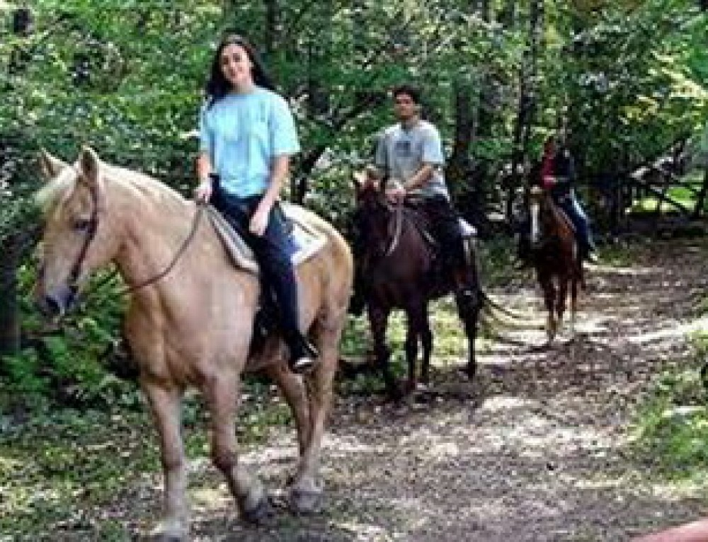 Chiang Mai Horse Riding Adventure