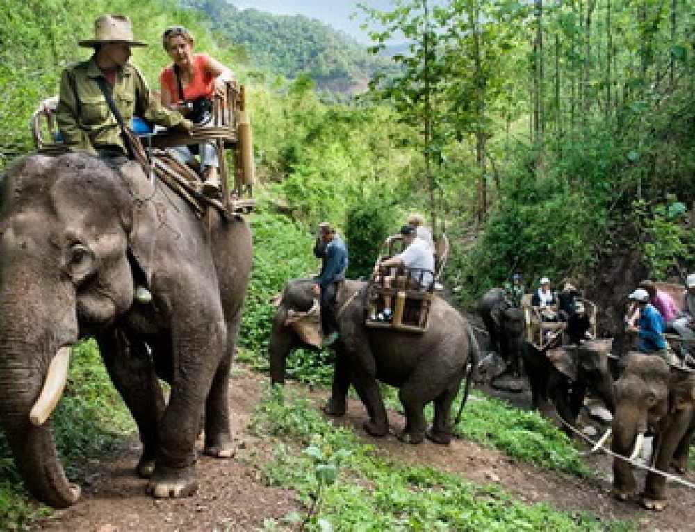 Package01 : Special Chiang Mai Package all highlights