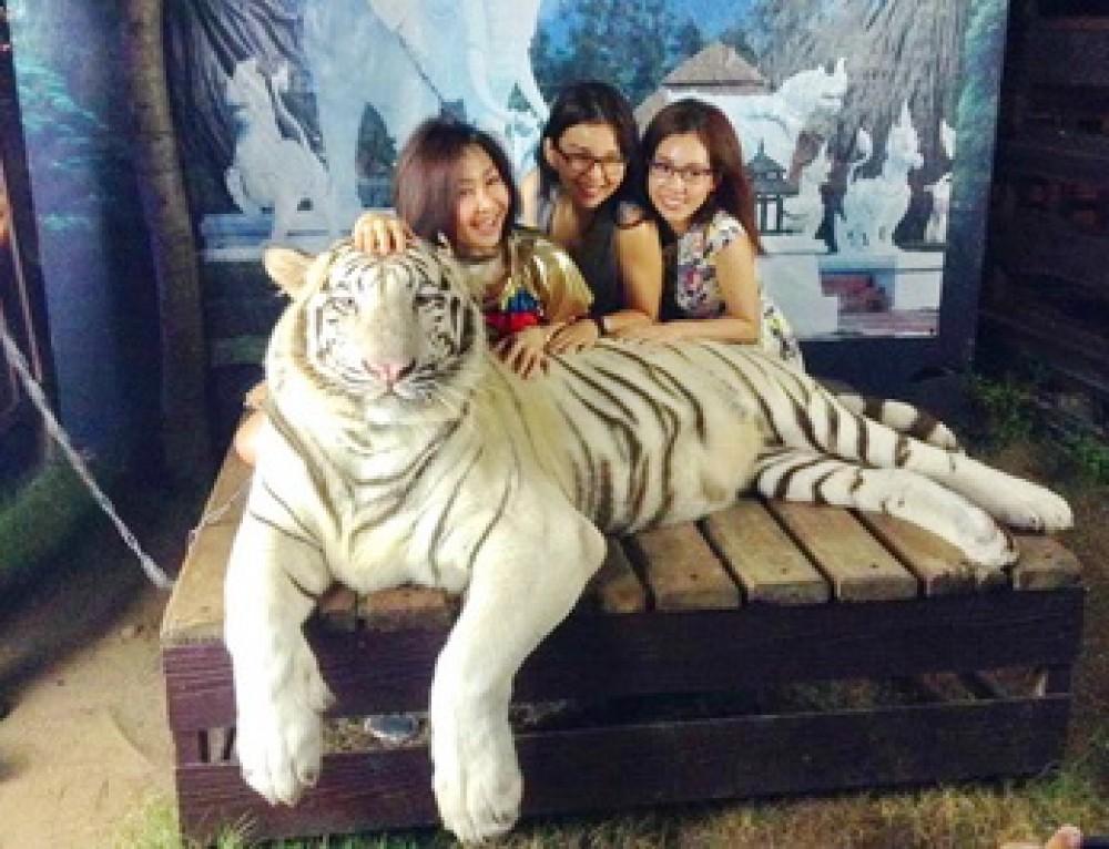Private Tour08 : Private Tour Chiang Mai Night Safari