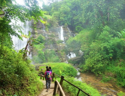 Private Tour14 : Private Tour Doi Inthanon National Park