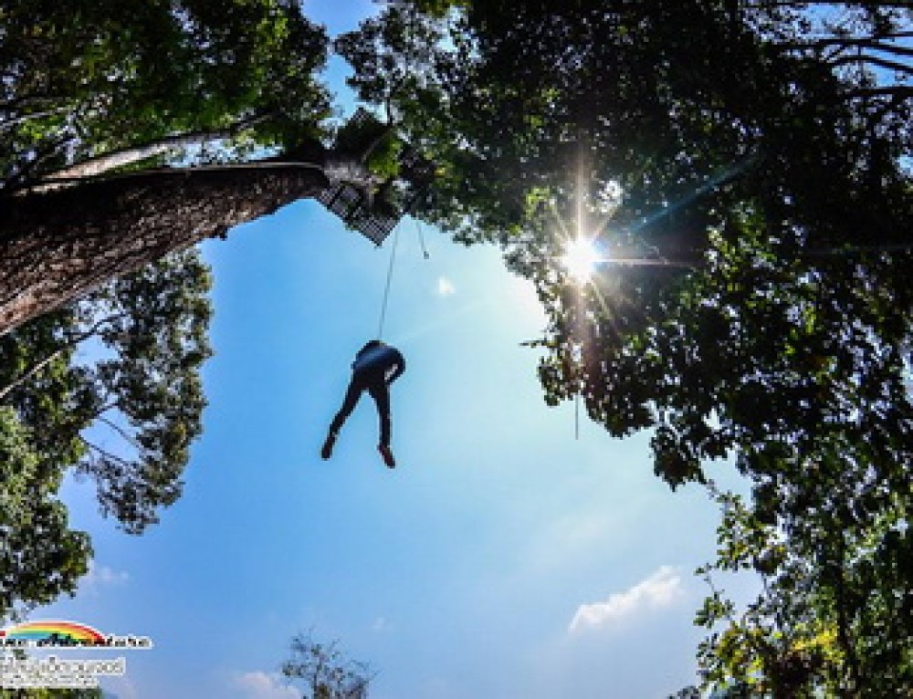 Zipline05 : Skyline Adventure