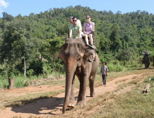 Chiang Mai Trek16 : 3 days 2 nights Chiang Mai Private Trekking Doi Inthanon Nation Park