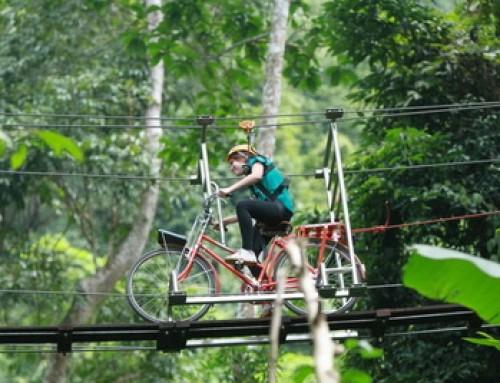 Zipline04 : Flying Squirrels Zipline