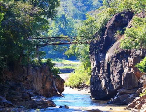 Maehongson Tour 02 : 2 Days Maehongson tour Doi Inthanon – Salawin River