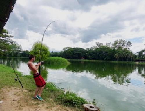 AD09 : Chiang Mai Fishing Park