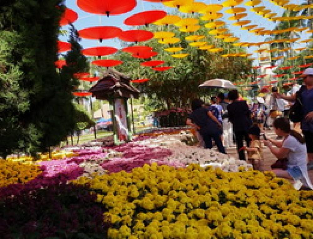 Nong Buakhad Park