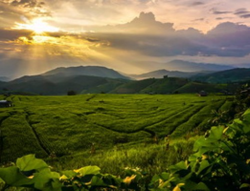 Maehongson Tour07 : 4 Days Package Tour Mae Jam – Mae Hong Son – Pai