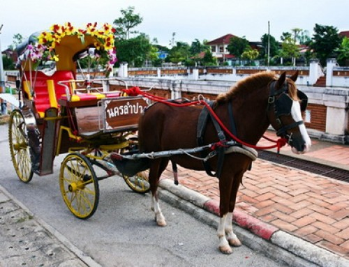 Horse Carriage in Lampang