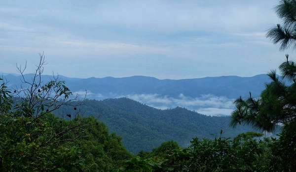 doi khun tan national park, doi khuntan national park, khun tan national park, khuntan national park, national parks in lamphun