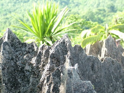 doi pha klong national park, doi pha klong forest park, national parks in phrae, attractions in phrae
