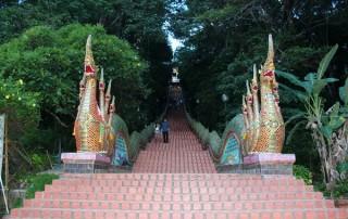 offering to monks, food offering to monks, offering to monks at morning, doi suthep temple, wat phra that doi suthep