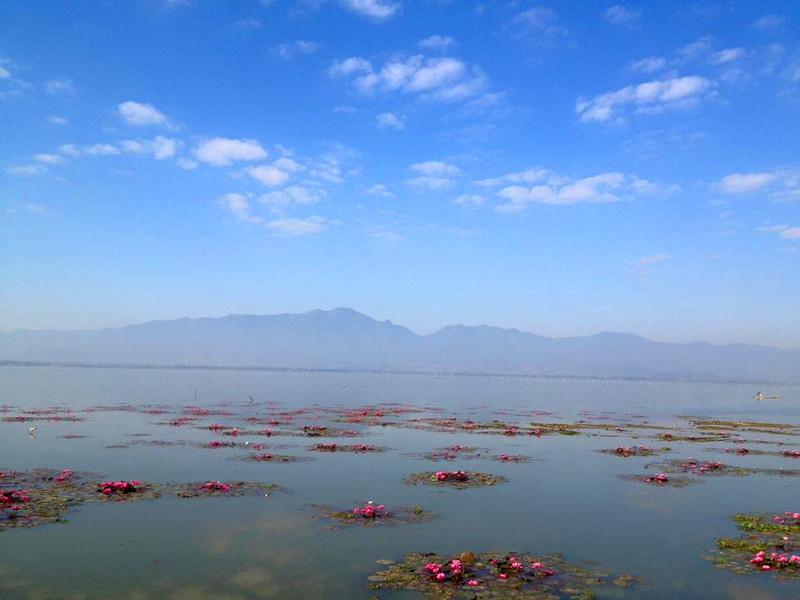 phayao lake, kwan phayao, kwan phayao lake