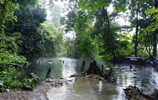sai ngam hotspring, tour pai all highlights, full day tour pai all highlights, tour full day in pai, tour pai, budget tour in pai, pai join in group tour, pai day tour, tour pai Thailand, tour in pai