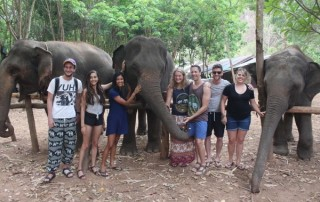 elephant care maewang, hug elephants sanctuary, hug elephants sanctuary mae wang, elephant feeding and bathing, chiang mai trekking, trekking in chiang mai